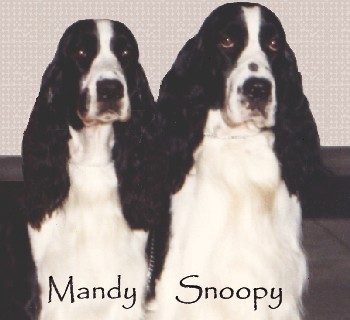 Mandy and Snoopy